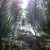 46-trail-angel