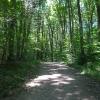 10-bridle-trail