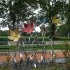 28-wild-flowers-near-glen-helen