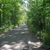 27-traveling-on-towpath-trail