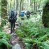 09-scenic-but-rocky-trail