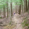05-john-on-scenic-trail-through-hemlocks