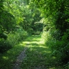 01-towpath-trail-south-of-bolivar