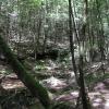 06-quiet-stream