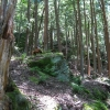 08-winding-path