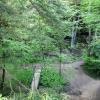 18-gorge-at-hocking-hills-state-park