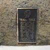 16-trail-tree-marker