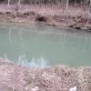 24-one-of-many-green-streams