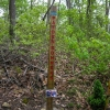 21-trail-memorial