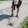 44-bob-offers-the-turtle-a-hiking-stick