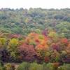 06-fall-colors