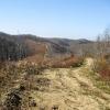 16-shawnee-state-forest