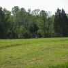 16-field-near-serpent-mound