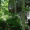 19-trail-near-fort-hill