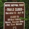 37-back-in-wayne-national-forest