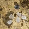 12-quarter-size-hailstones