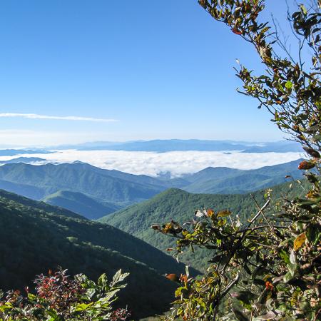 Smoky Mountain Seven