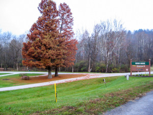 Leaving Wood Grove