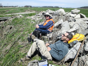 Lunch break--and nap?--on a rock pile