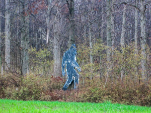 Bigfoot has finally been found!
