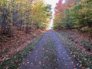 Lester Rail Trail