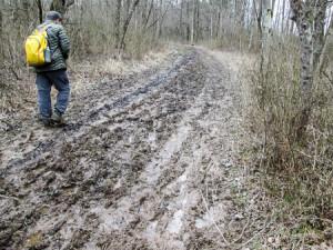 Hard to find a way around the muddy trail