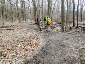 No blazes in O'Neill Woods but just followed the mud
