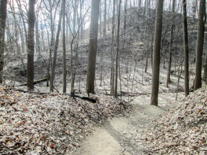 Meandering and undulating trail